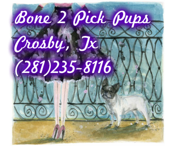 Bone 2 Pick Pups 2812358116
